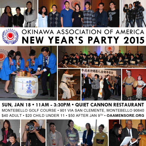 New Year's Party 2015
